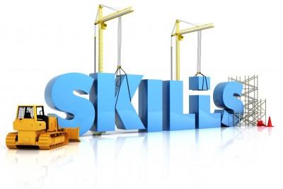 11083850_s-skills